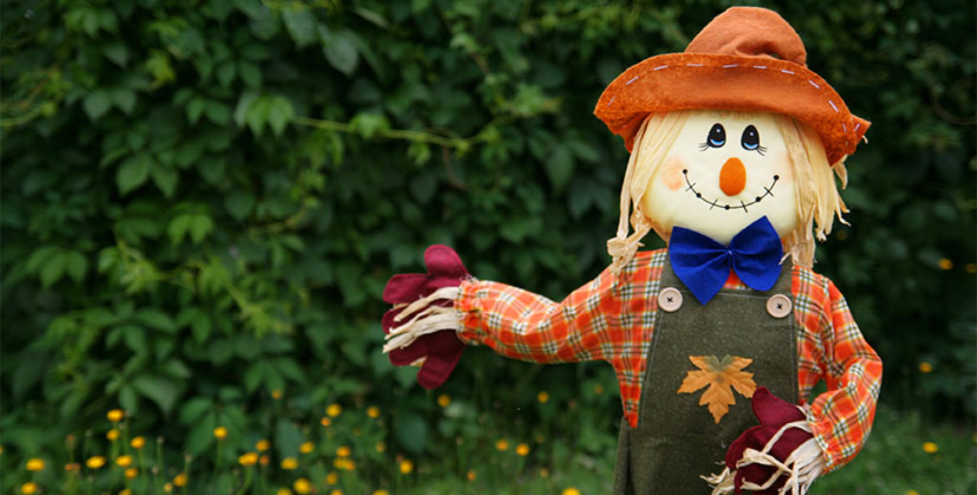 11th Wilmslow Rotary Scarecrow festival